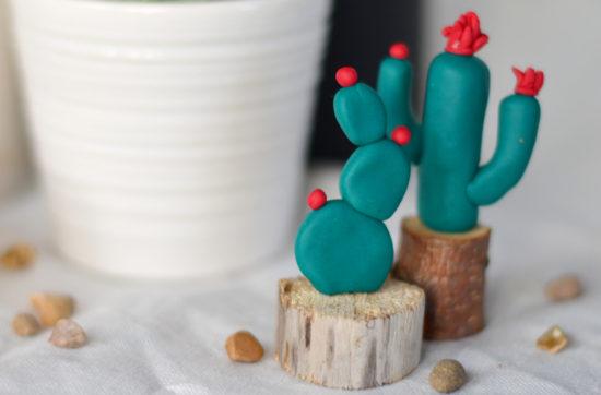 Kaktus diy
