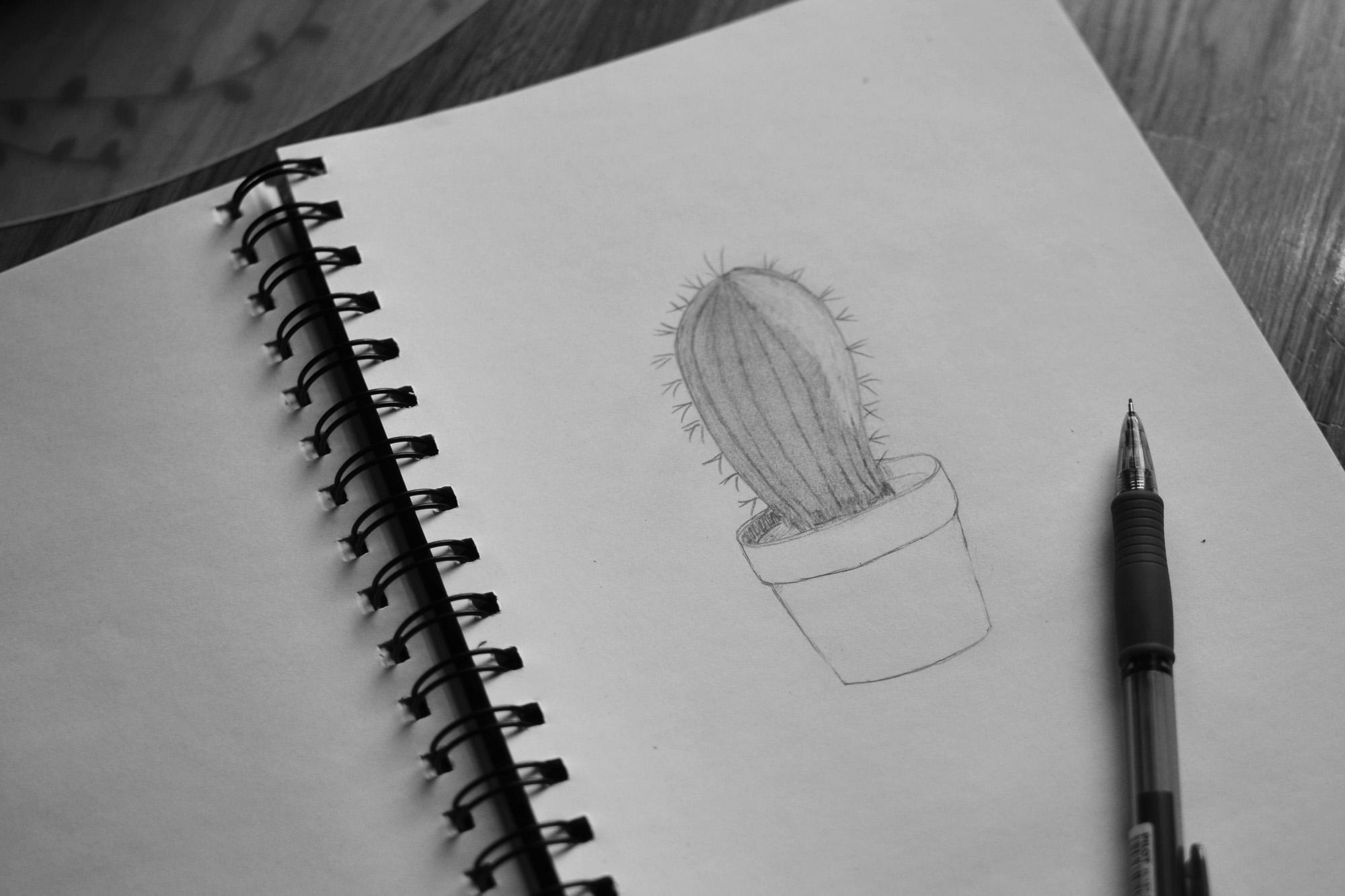 Rita kaktus